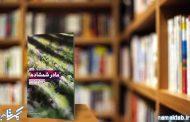 مادر شمشادها: کوتاه اما جذاب، پرکشش و پرمحتوا برای آشنایی با شهید موحدی